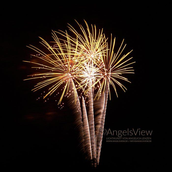 Celebration AngelsView